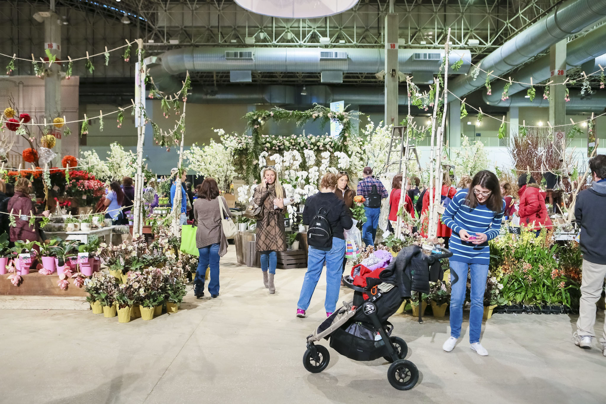 Photos From The Chicago Flower Garden Show At Navy Pier