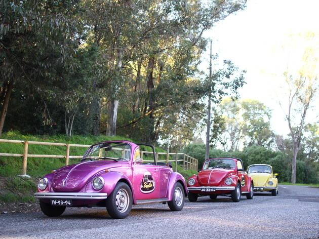 A Lisbon by Beetle tem carros de todas as cores