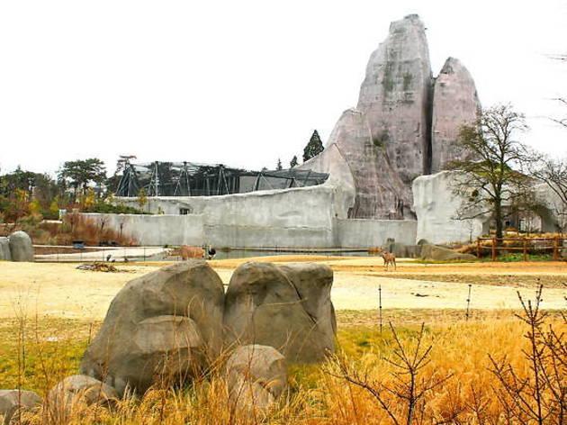 Gagnez vos pass annuels au Parc Zoologique