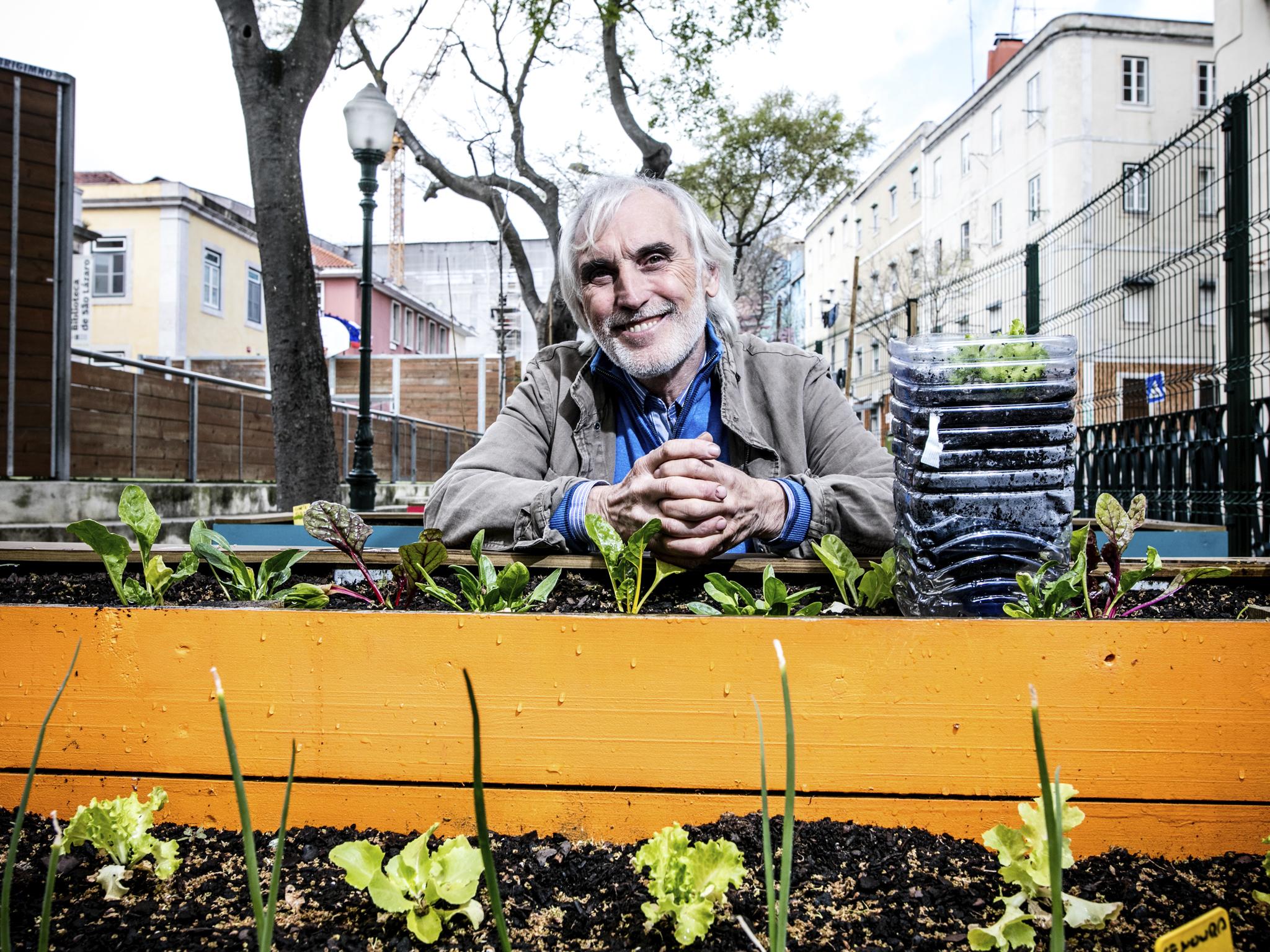 Oito coisas que aprendemos sobre hortas biológicas com Mariano Bueno