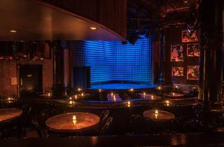 Joe's Pub (Photograph: Paul Wagtouicz)