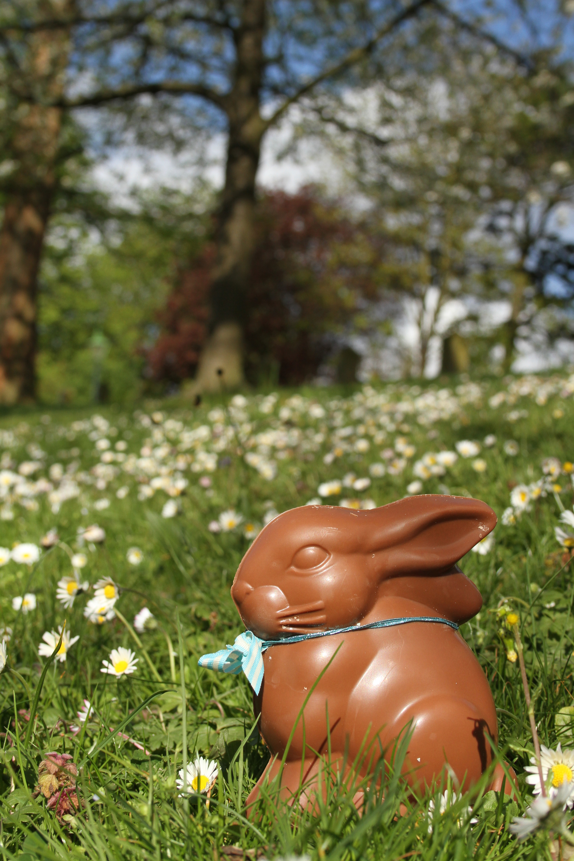 Horniman Museum Easter Fair