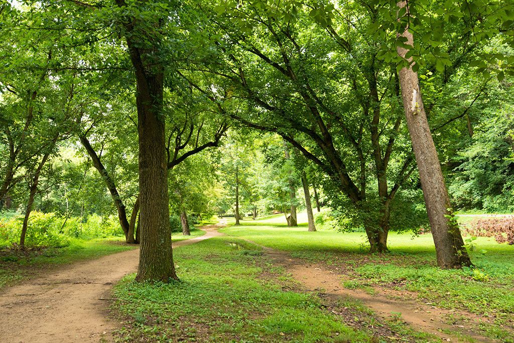 Rock Creek Park