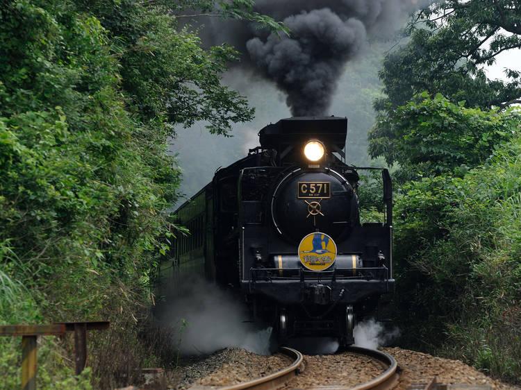 Hop on a steam train...