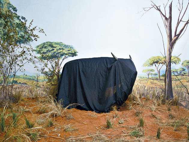 In the Days of a Dark Safari - Kiluanji Kia Henda