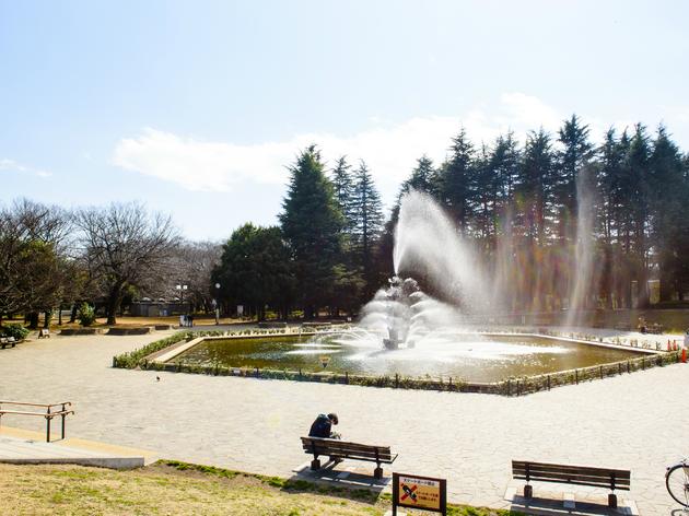Five great picnic spots in Tokyo