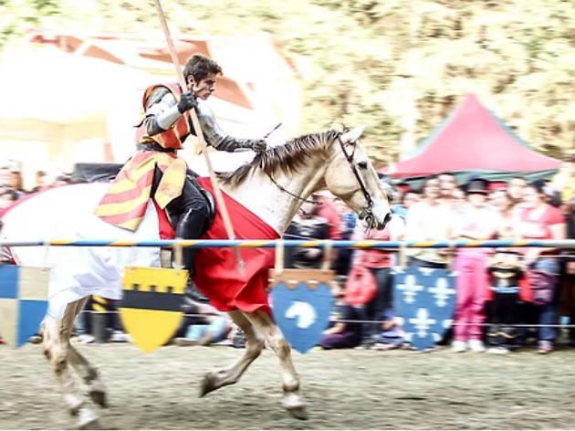 Festival Mundo Medieval La Marquesa