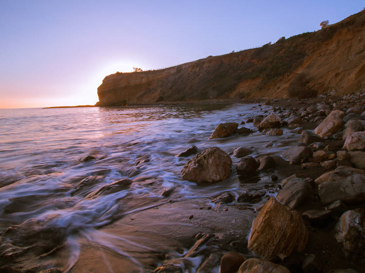 Abalone Cove Ecological Reserve