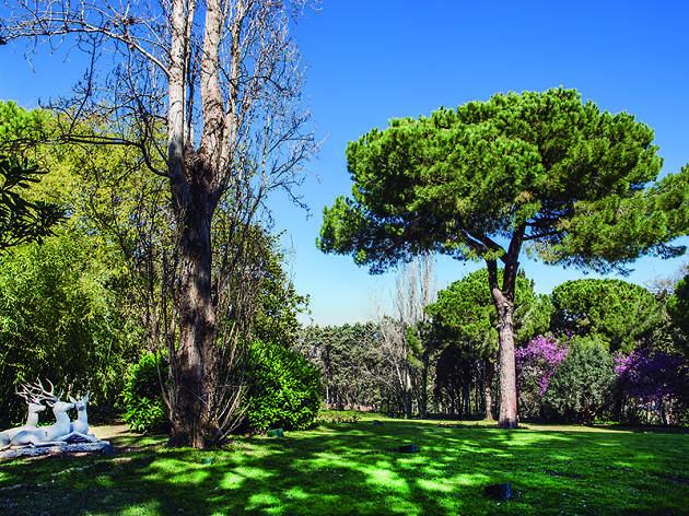 Jardins Joan Maragall del Palauet Albéniz