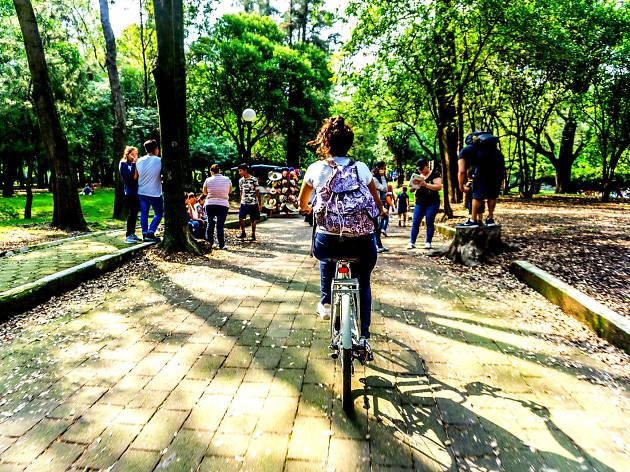Recorre la Ciudad de México en Bicicleta