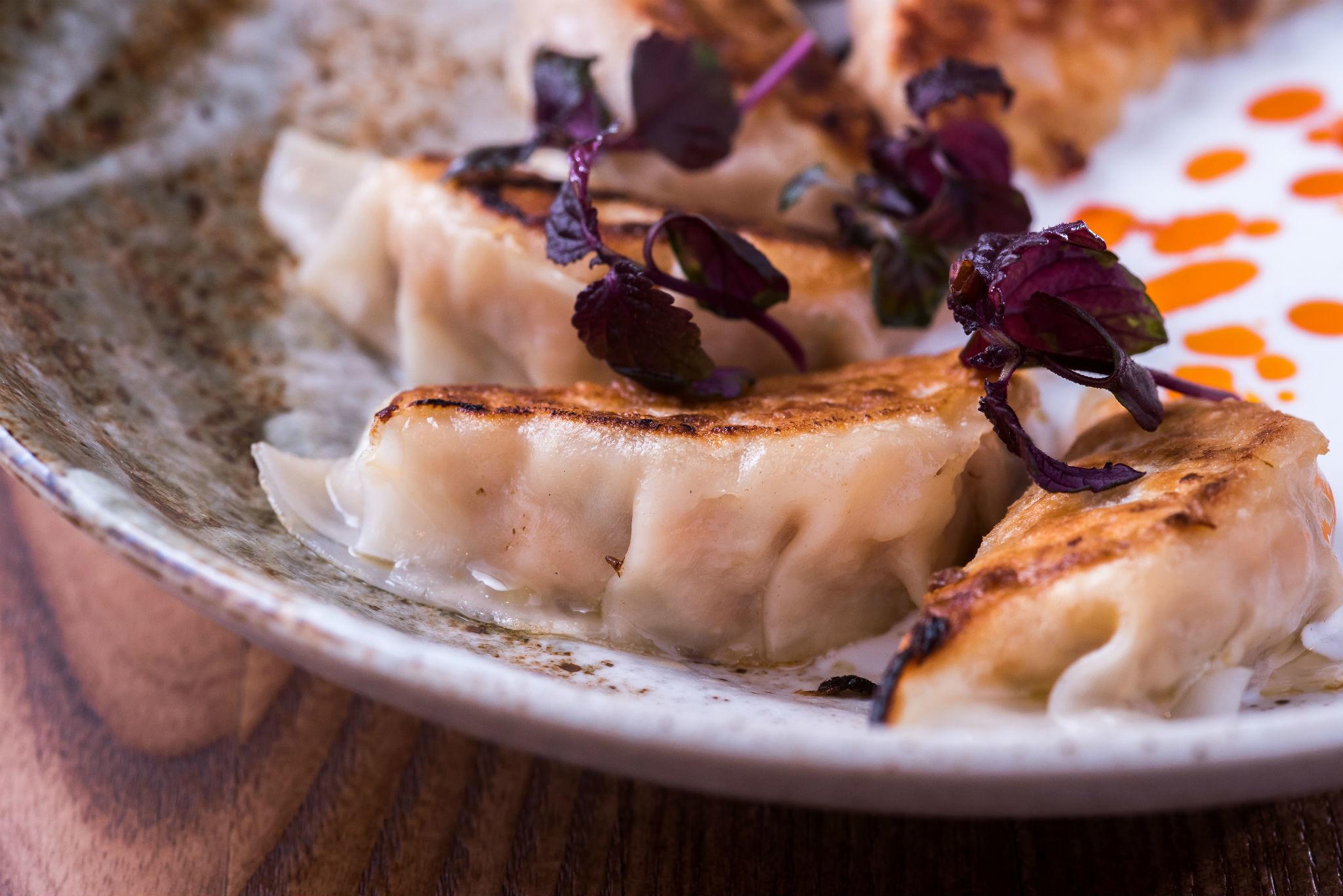 london's best dumplings, gyoza bar