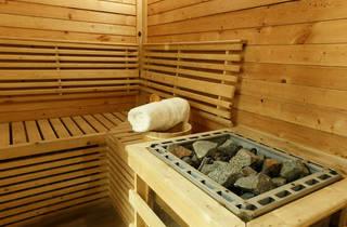 Sauna100