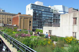 Here are the fun and free events coming to the High Line this summer