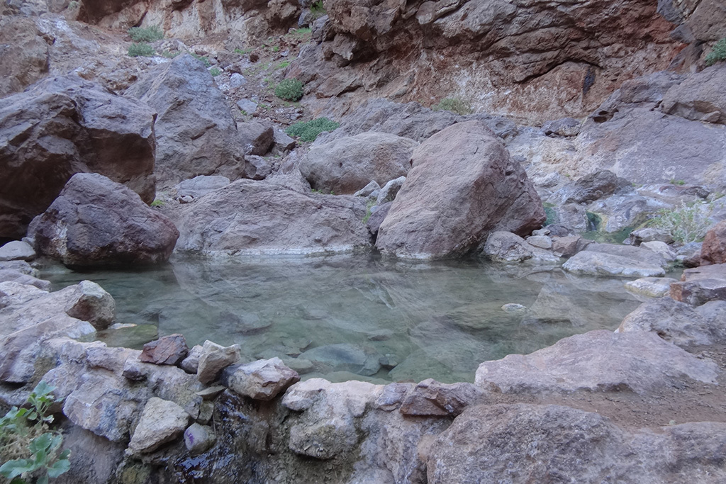 Hot springs in Goldstrike Canyon