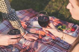 와인 바 피크닉