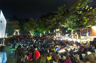 夜空と交差する森の上映会
