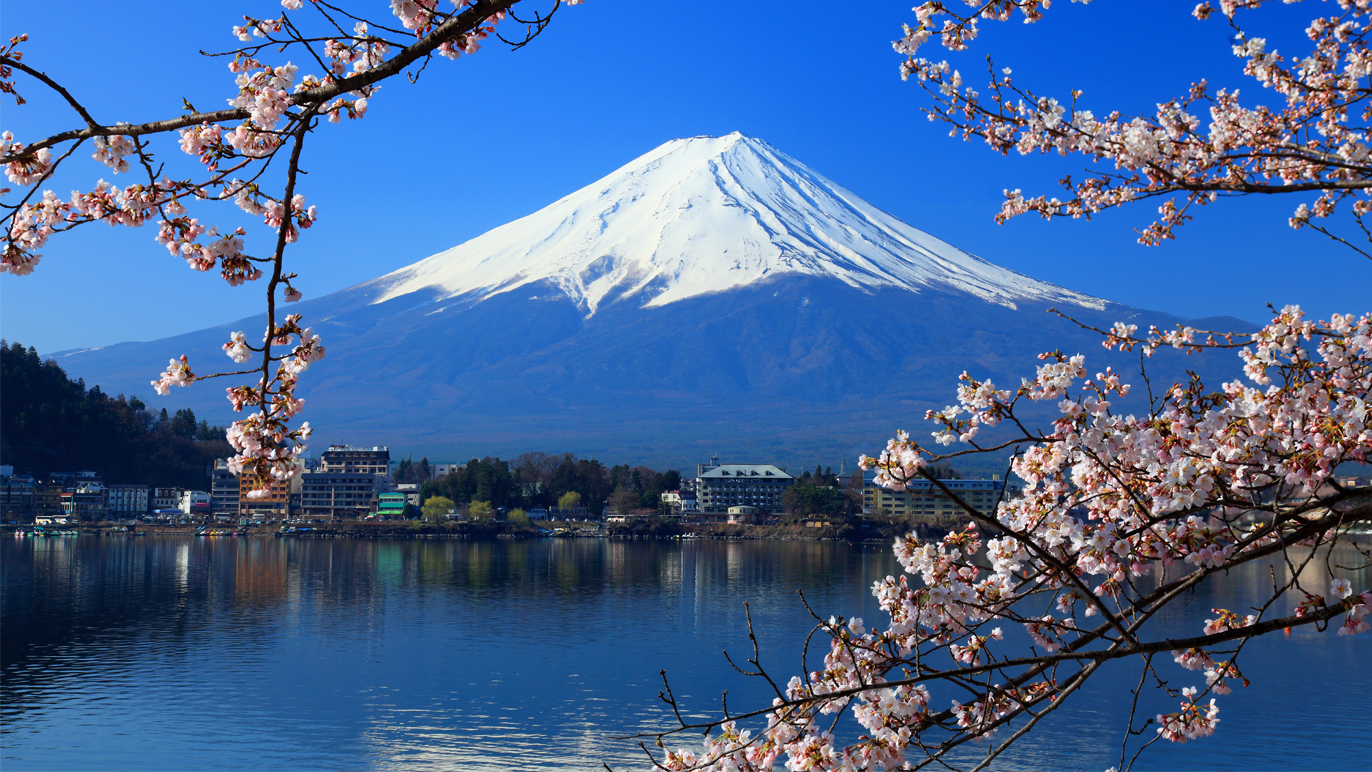 Hike Mount Fuji