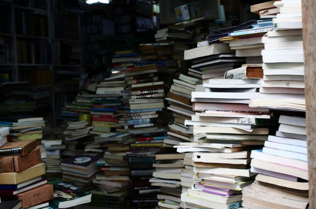 Els escriptors recomanen llibres