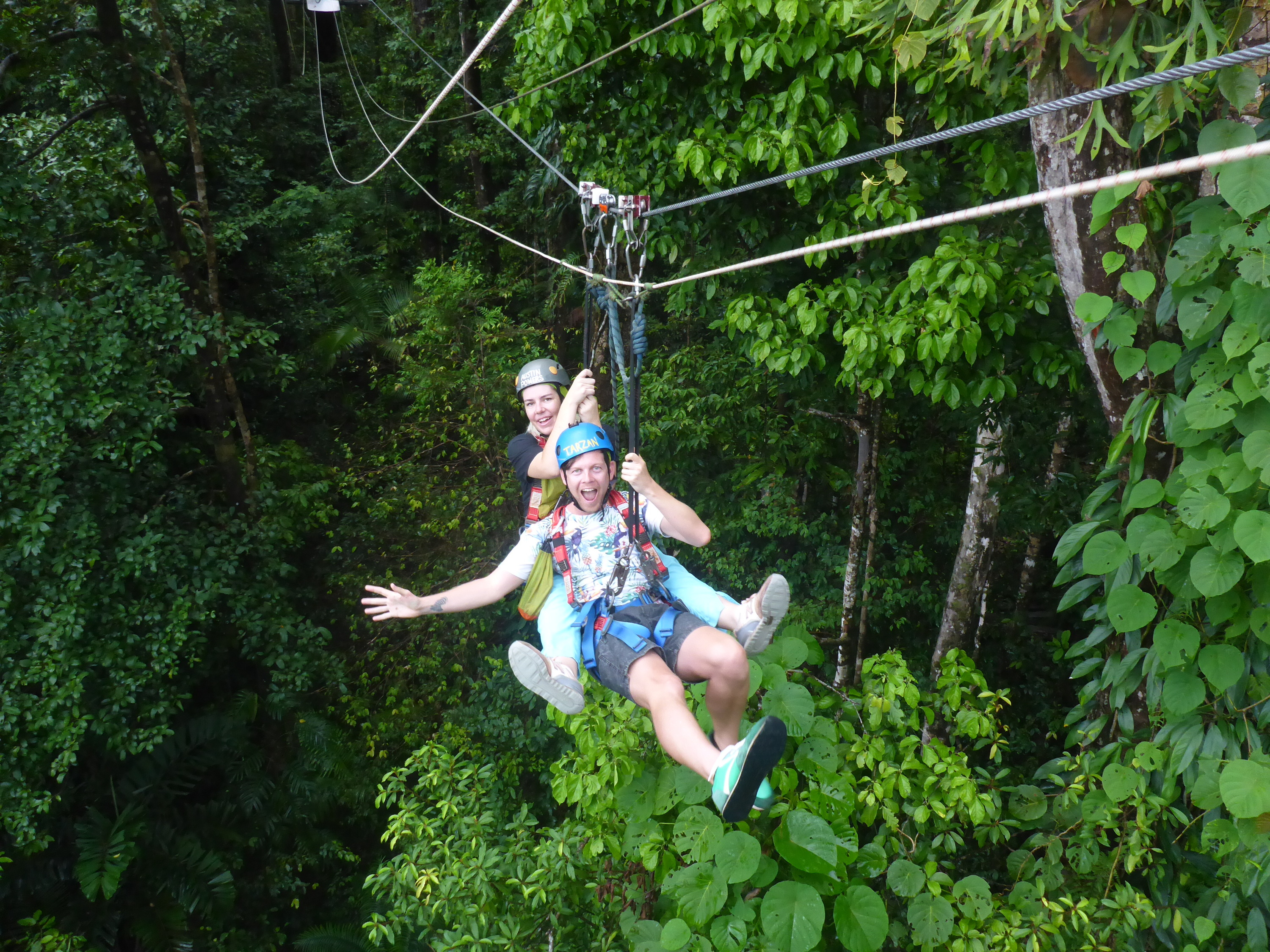 Jungle surfing in the Daintree Rainforest