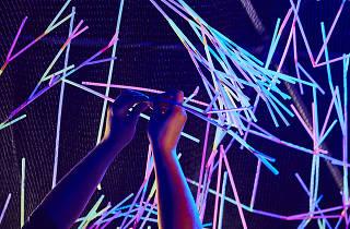 Scienceworks Neon Nature