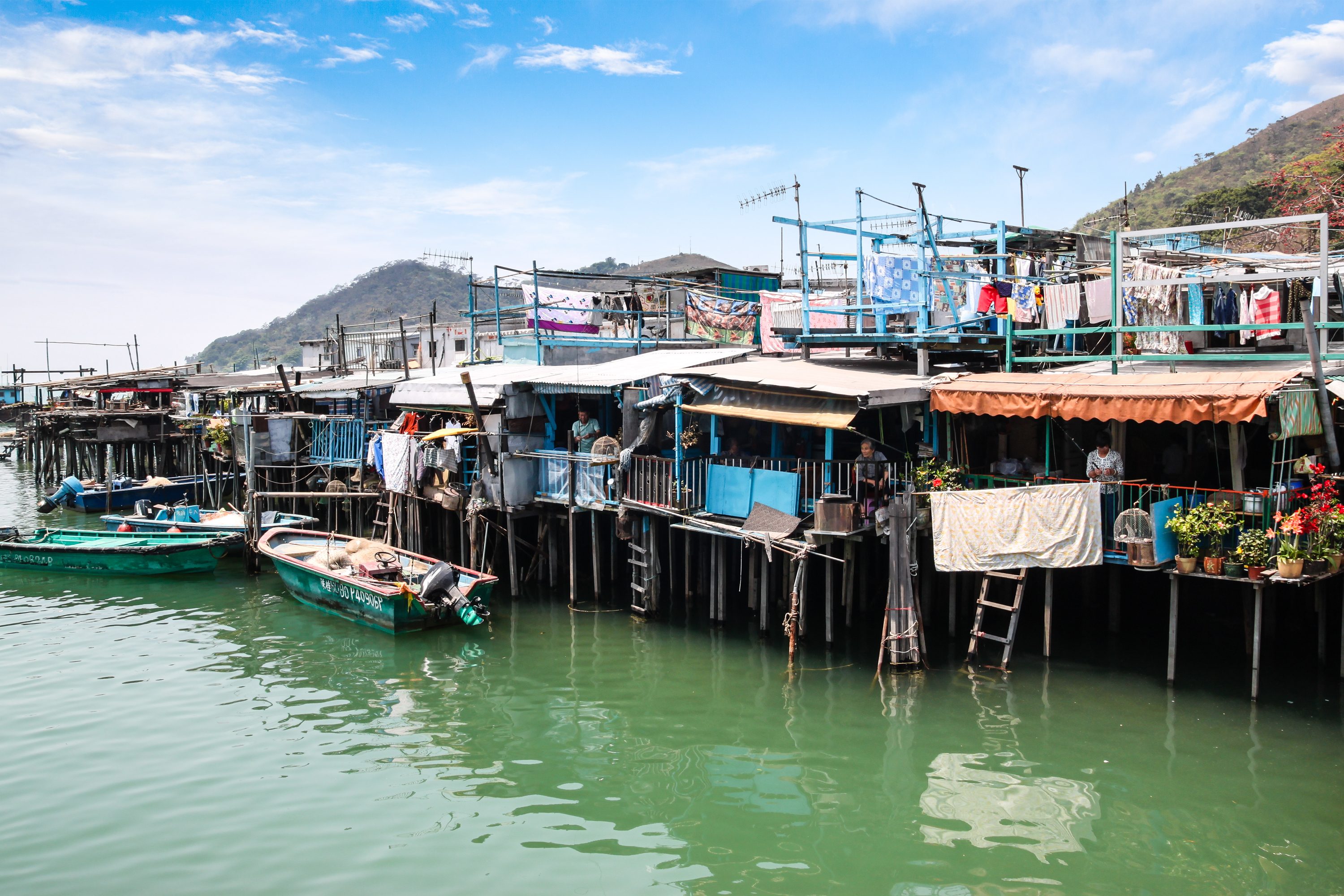Image result for tai o