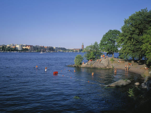 Dive into Stockholm's water