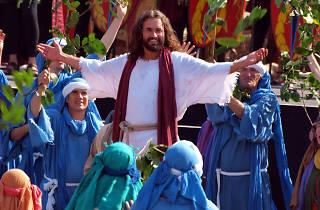 The Passion of Jesus