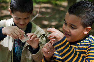 Earth Day Insect Expedition