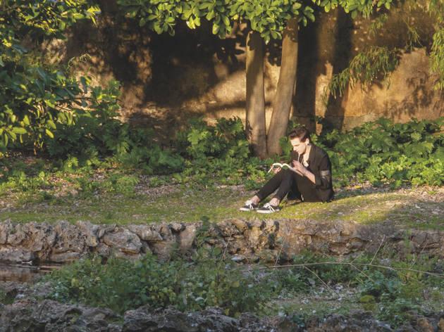 pessoa a ler em jardim
