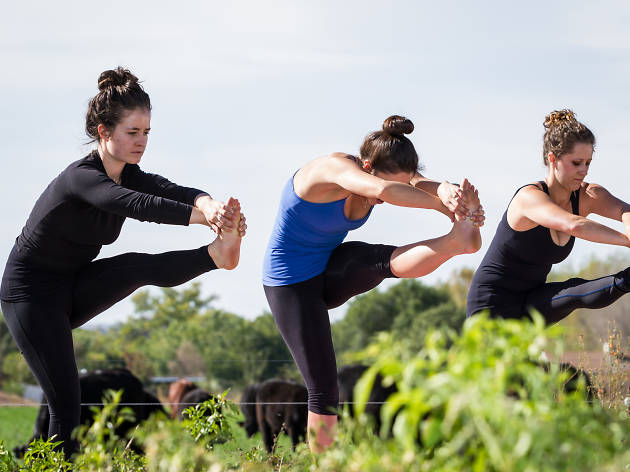 Earth Day Yoga