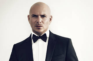 Pitbull (cancelled)