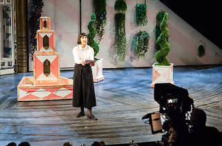 Twelfth Night, Tamsin Greig, National Theatre