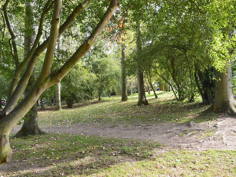 The Orchard Campsite, Suffolk