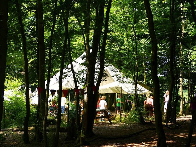 Eco Camp UK at Wild Boar Wood, West Sussex