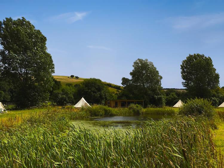 Gorgeous campsites near London