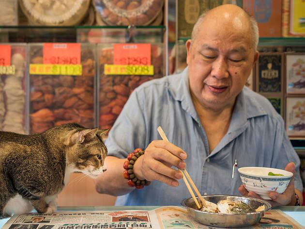 Marcel Heijnen: Hong Kong Shop Cats