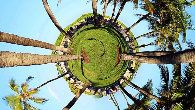 Earth Day Miami