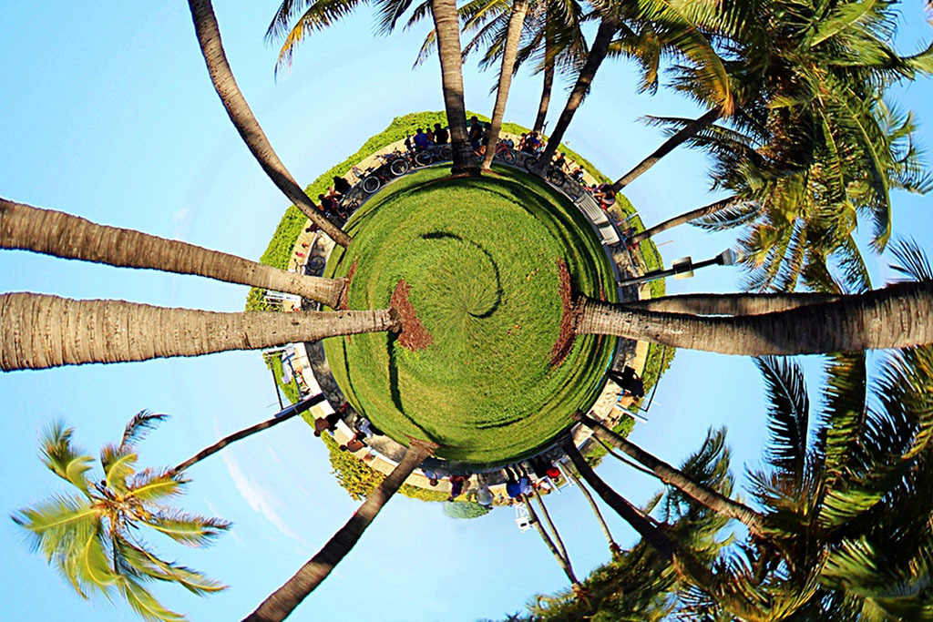 10 ways to celebrate Earth Day in Miami
