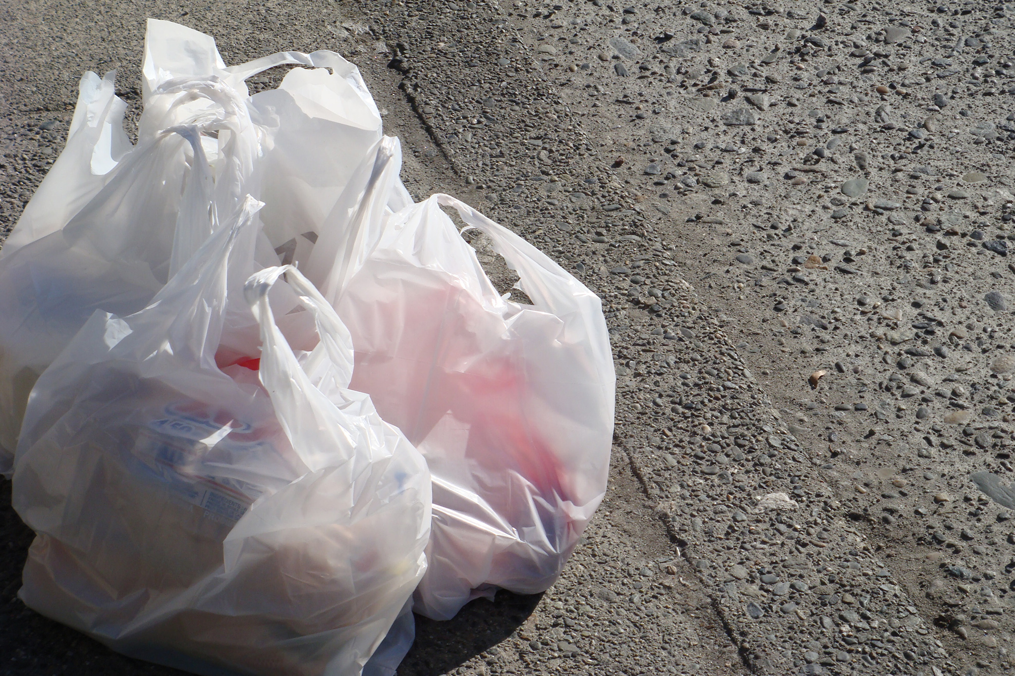Chicago's bag tax brings significant drop in disposable bag use, study finds