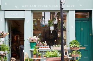 5 quirky plant shops you need to visit in East London
