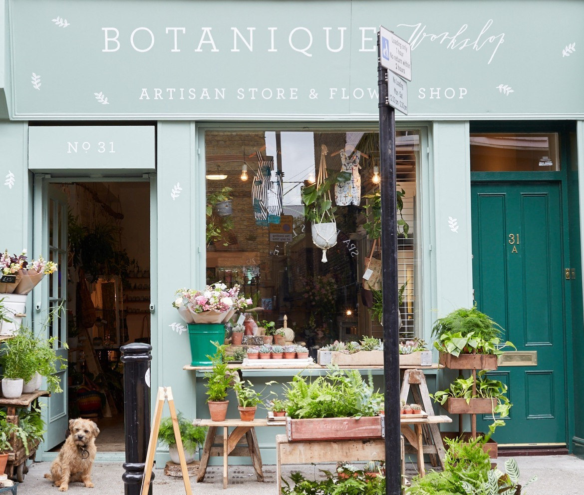 Seven Quirky Plant Shops In East London You Should Visit