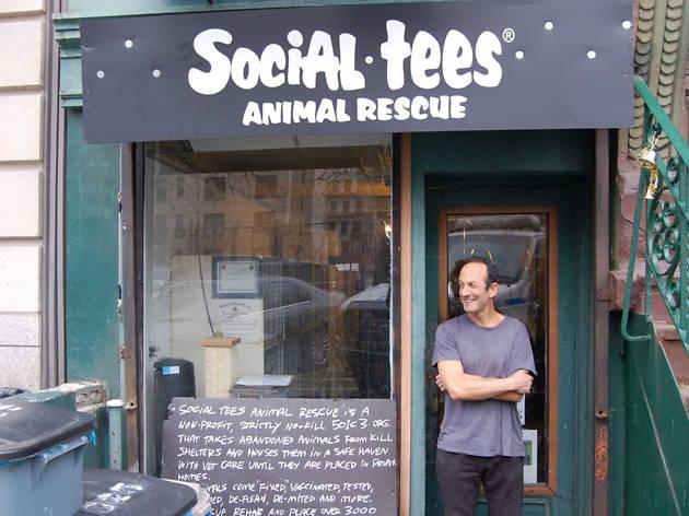 Social Tees Animal Rescue