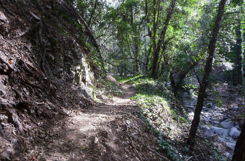 Hit the trails on a mountain bike adventure