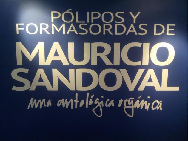 (Foto: Fernando Hernández)