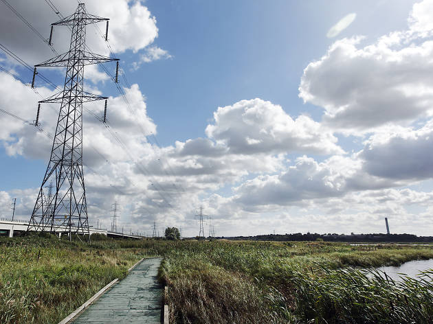Best bike rides from London: Rainham Marshes