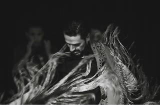 Noche flamenca INTERflamenca
