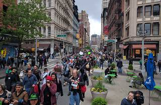 NYC Cannabis Parade
