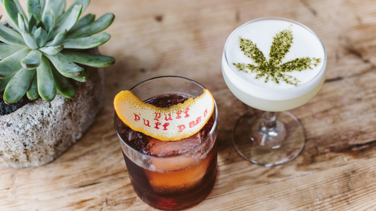 The Stoney Negroni and Sour T-iesel, two of the cannabis drinks offered at Gracias Madre