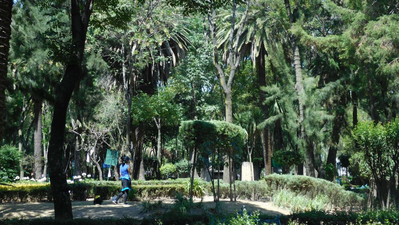 Zona canina del Parque Las Américas