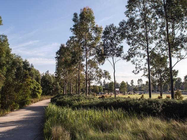 The Ponds Parklands